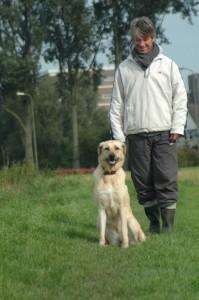 Hondenbrein2